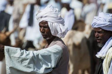 Mercato bestiame-11